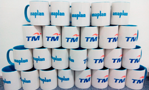 TM Colour Mugs
